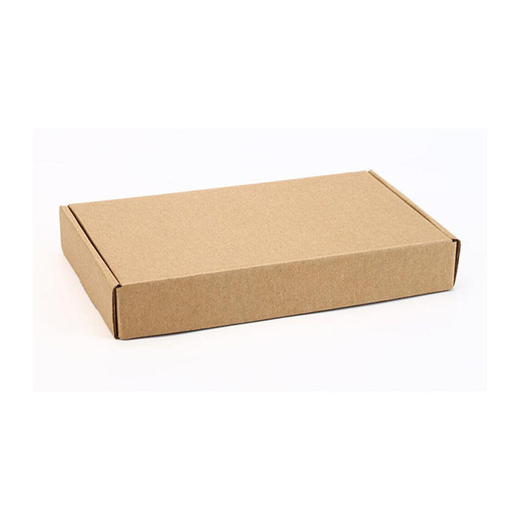 Kraft Presentation Mailers Corrugated Mailer Folding Packing Boxes